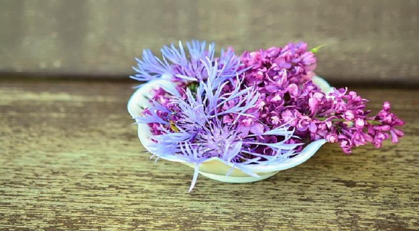 #37 Pomysł na biznes -kwiaciarnia. Własna marka czy franczyza ?