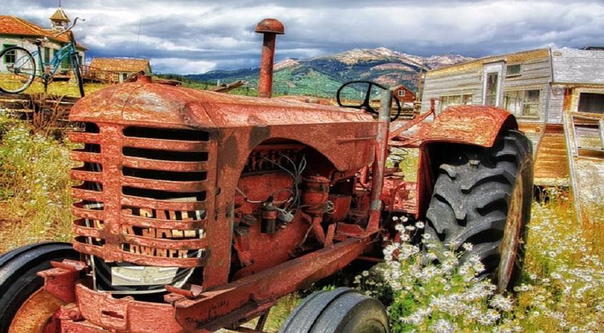 12 pomysłów na biznes na wsi !